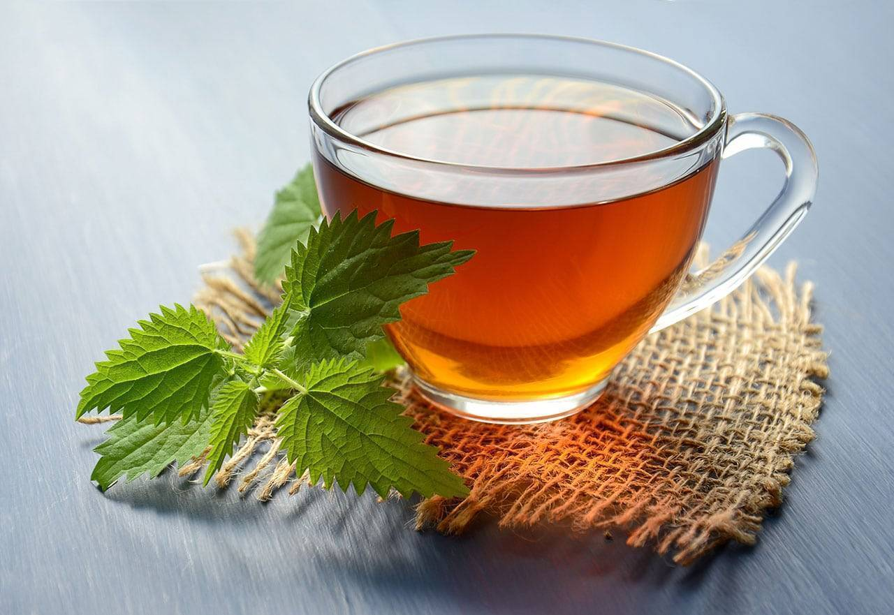 What Are The Benefits of Green Tea To Your Health?